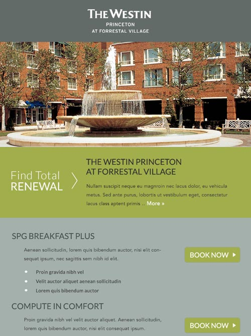 Hotel Email Design - The Westin Princeton at Forrestal Village