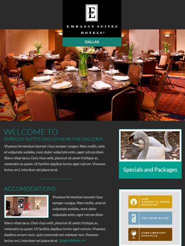 Hotel Newsletter Email Designs - Embassy Suites, Dallas